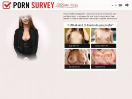 The Porn Survey